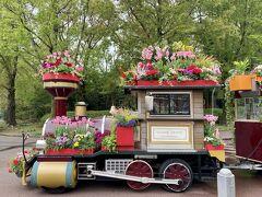 さすがハウステンボス。 花で彩られた汽車がかわいらしいです。 ちょうどチューリップの季節に来れてよかったです。