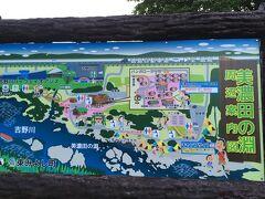 徳島の吉野川近くには多くのキャンプ場があるのですが 初めに泊まろうと思っていたキャンプ場は コロナで閉鎖中で、結局利用したのは、美濃田の淵キャンプ場  18時半に着いた時には多くの人でごった返しの状態でした・・・