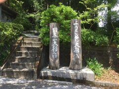 日本一の大杉を見に来ました
