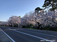「東門口」から出て、外濠の桜を観ながら、晩ごはんのお店に向かいました。