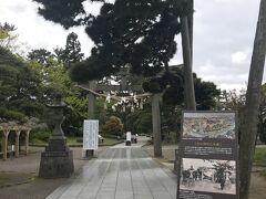 白山神社にお詣り。この松?がまたすごいくびれでビックリした。