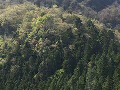 妙義神社を通って、妙義山を登山できるそうです! 大の字の近くに行けるようなので いつか行けたら良いです^ ^