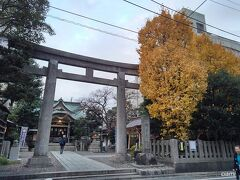 住吉の駅で降りてみましたよ。  色づいたイチョウの奥に、猿江神社。