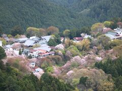 桜に囲まれた家々は、春は最高の季節だろうな(*^▽^*)