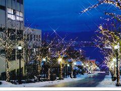 これはおまけ。冬の夜の八幡坂です。 函館西部地区は色んな様式の建物、色んな宗教の教会や寺院がたくさんあって、宣伝によく使われる言葉どおり、「異国情緒」あふれる場所。港を眺める坂もたくさんあり、それぞれに個性があります。コロナ対策を十分に行って、またお散歩に出かけたいと思います。