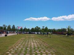 次の日、5月2日。 お天気も良いので平塚花菜ガーデン再び。  前回来たのは4月10日。桜の終わりころ。 https://4travel.jp/travelogue/11687569