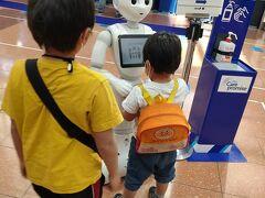 羽田空港でいつも気になってるこの子。今回もANA利用。