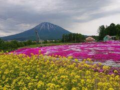 (札樽道札幌西ICから朝里IC・赤井川村経由で90km) (所要時間は1時間半) 倶知安駅から約1kmの場所。庭園内を自由散策できます。