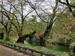 弘前公園内は、遊歩道が整備されている。