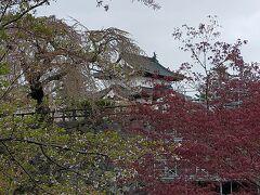 弘前城本丸をお濠にかかった橋から眺める。