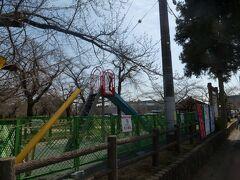 飯能市中央公園には誰もいません。
