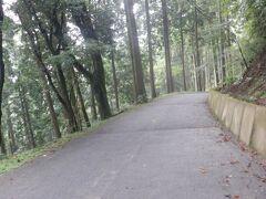 宿を出発して2時間、ようやく雲辺寺参道に入りました。舗装道は掃き清められており、おごそかな気持ちになります。