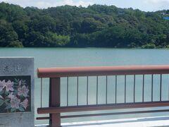 下流の井関池でも五郷ダムの水を貯水しています。江戸時代初期に築造されたそうです。人口が増えて水不足となったので、1974年に洪水が多く発生する徳島吉野川の水を使おうとなりました。、