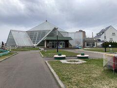 まだ時間も早かったので、ホテルから徒歩10分くらいのところにある、函館市熱帯植物園に来ました。  入園料300円でした。