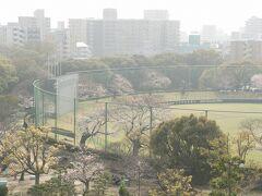 ●明石公園  公園内にある「明石トーカロ球場」 高校野球の予選で使われる球場でもあります。