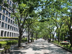 大阪市役所横の緑のトンネルを振り返り