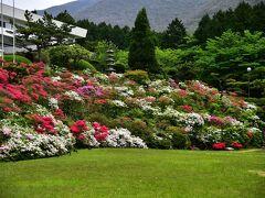 箱名湯宿 然 をチェックアウトしてから 近くのホテルに満開のツツジを観に  https://youtu.be/xwFigvMaI7s ホテル花月園前の庭園です。