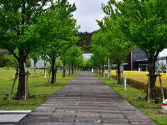 湯之助の宿 長楽園をあとに 出雲大社へ  ここは、島根県立古代出雲歴史博物館