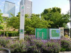 錦糸町駅から徒歩数分の場所にある「錦糸公園」。 ホテルから見えて気になったので、お散歩がてらに行ってみました。 とても広々とした公園でした。