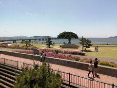 竹島園地越しに見る竹島。眺めがいいです。