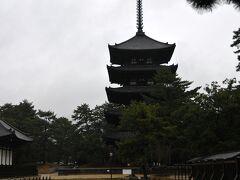 南円堂の前から、雨に濡れる五重塔を この五重塔、もちろん国宝です。