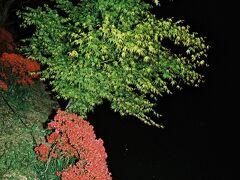 八条が池畔の赤・黄・緑のカラーリングがキレイだった。