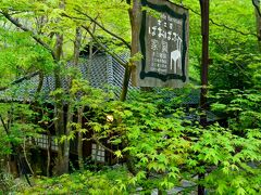 ふりこ茶房 https://fulico.wixsite.com/karuizawa-fulico  でも、茶房の看板など出ていないんですけどぉ???へっ?家具屋さん?工房??? ハテナマークがいっぱい飛び交う私とマリアンヌさん(笑) 看板可愛いから撮って帰ろうか~