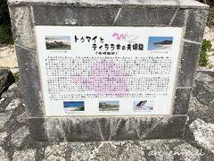 寺崎海岸へ到着!