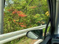 伊香保温泉から榛名湖に行く途中の長峰公園付近は ツツジやサツキが綺麗に沿道を彩っていました♪ 走りながらでブレてしまって。。唯一綺麗?に撮れた写真でした(^^;