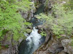 磊々峡は覗橋周辺の650mの峡谷で名取川の両岸に切り立った巨岩が水面を覆うように迫っています。