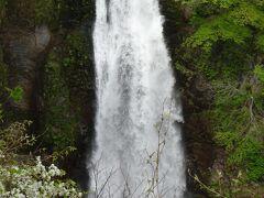 秋保大滝(名取川で高さ55m 幅6mです。)