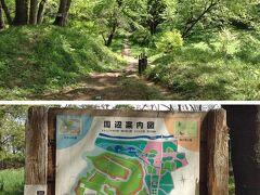 木々の間の散策路をいくと、やがて「蝶の里公園」に出ました。オオムラサキを保護しているはずですが、飛ぶ姿は夏しか見られないようです