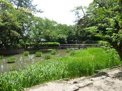 下り坂の右側に行くと浄の池があります。