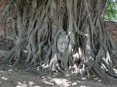 ワット プラ マハタート 五体満足の仏像です。