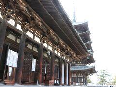 手前の東金堂で、一列にお並びの仏様を参拝。 興福寺境内は無料、内部への入場はその都度支払い。