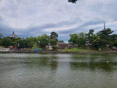 お腹も一杯になったのでならまちを北上しました。 猿沢池園地に来ました。 先に世界遺産の興福寺が見えます。