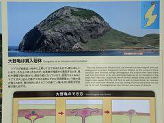 13日の午後は外海府海岸をめぐりました。 大野亀は標高160mもある貫入痕。