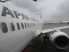 JAL183は、機体がうまく撮れません((+_+))