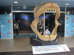 さて、イルカのショーの時間になったので油壺マリンパークへ。 入場したところにある大きなサメの口のオブジェ。 記念撮影スポットです。