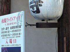 2日目夜 南禅寺、蹴上インクラインからいったんホテルへ戻り、一休みしたのち、東寺のライトアップを見にいきました。