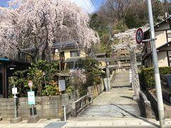 田村大元神社という神社。駐車場に車を止めて坂を上がることに。
