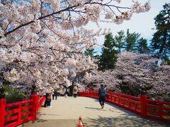 [杉の大橋]朱い橋と桜~!とっても良いね^^