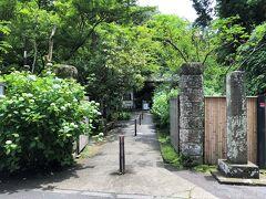 鎌倉市北鎌倉『明月院(あじさい寺)』の写真。  左側に立派なあじさいがあります。  <アクセス> JR横須賀線・湘南新宿ライン「北鎌倉」駅下車徒歩10分