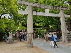 鎌倉時代に作られたという大鳥居をくぐり