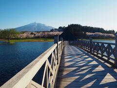 さらに進んだところで、また鶴の舞橋と桜と岩木山を撮ってみたら、橋の木組みの影も良い感じ