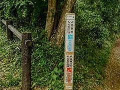 ◆「岩場コース」と「通常コース」の分岐点。  ※今回は「岩場コース」(左側)を行って「十六羅漢」の石仏を鑑賞しました!  ※07:39撮影