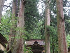 1時間後に永平寺に到着です。 大杉の向こうに見えるのが唐門。