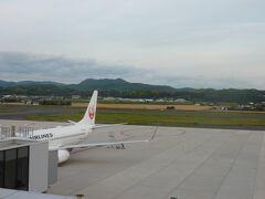 3階の展望デッキへ! スポットに羽田行きのB737-800型機が駐機中。 JALでは、地方路線の主力機です。 前回は、B767-300ERでしたが、今回は、緊急事態宣言が発令されていて搭乗客が少なめなので小さめの機材になっております。 羽田-伊丹線でも主力機から小さめのリージョナルジェットに機材変更になったりもしております。