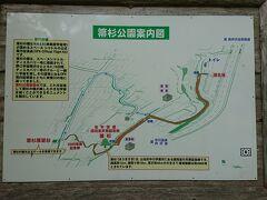 丹沢湖からさらに奥に進んで、中川の箒杉へ 箒杉の近くではなく道路沿いに駐車場があります