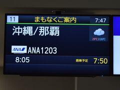 まずは福岡から沖縄・那覇まで向かいます。那覇まではNH1203、シップはボーイング737-800です。シップは5分ほど早く福岡空港を離陸しました。